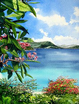 Fleurs des Antilles.