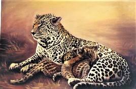 leopard et ces petits