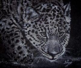 léopard