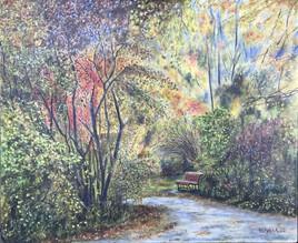 L'automne dans parc Angrignon à Montréal