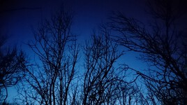 Nuit hivernale 2