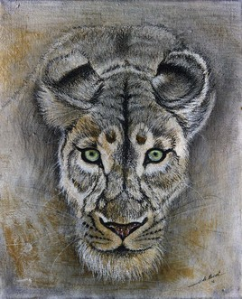 Lionne aux yeux verts