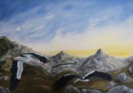 Migration des cigognes