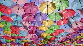 Les parapluies d'un Cher bourg.