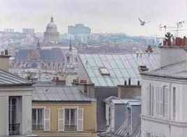 """""""Les 4 pigeons et les toits de Montmartre"""""""