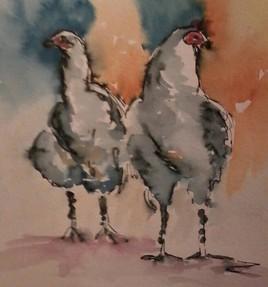 petites poules en alerte