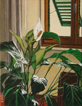 la Spathiphyllum dans le salon de l'artiste