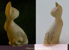 Chat contorsionniste (pléonasme)