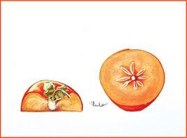 Le kaki coupé / Painting A cut persimmon