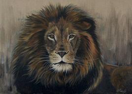 La sagesse du lion