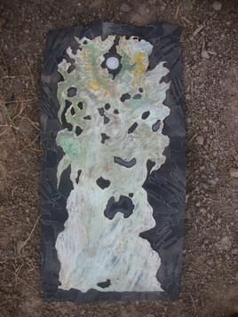 l ancetre baobab
