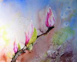 La fleur de Pierre Magnol