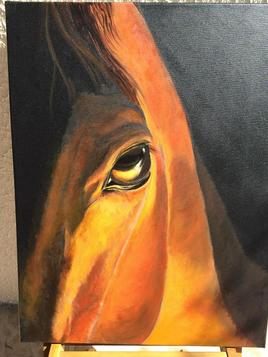 oeil de cheval
