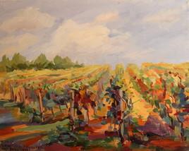Vignoble sicilien