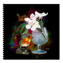 L'oiseau et le verre