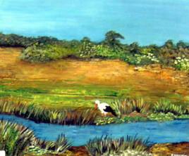 Lehéron dans les marais du Crotoy (80)