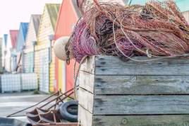 Caisse de pêche