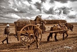 les paysans au temps jadis