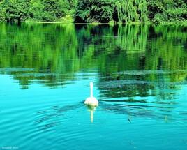 Bleu, blanc ,vert...