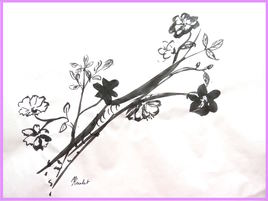 Une branche de prunus / Painting A prunus' limb