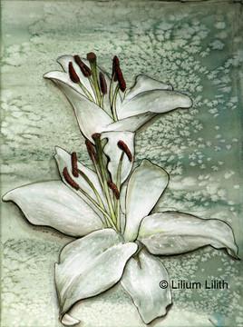 Aquarelle. Lilium n°2