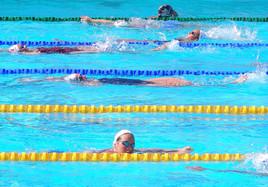open EDF de natation