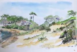 dunes de la plage de la Cèpe