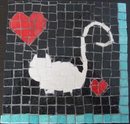 chat blanc sur fond noir