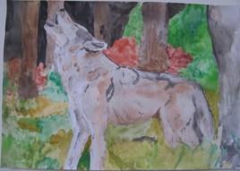 """une aquarelle animalière """"loup hurlant"""""""
