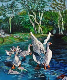 Les oies au bain