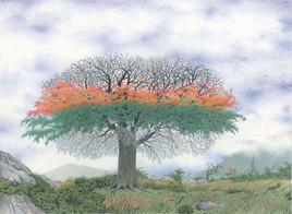 L'arbre aux quatre saisons